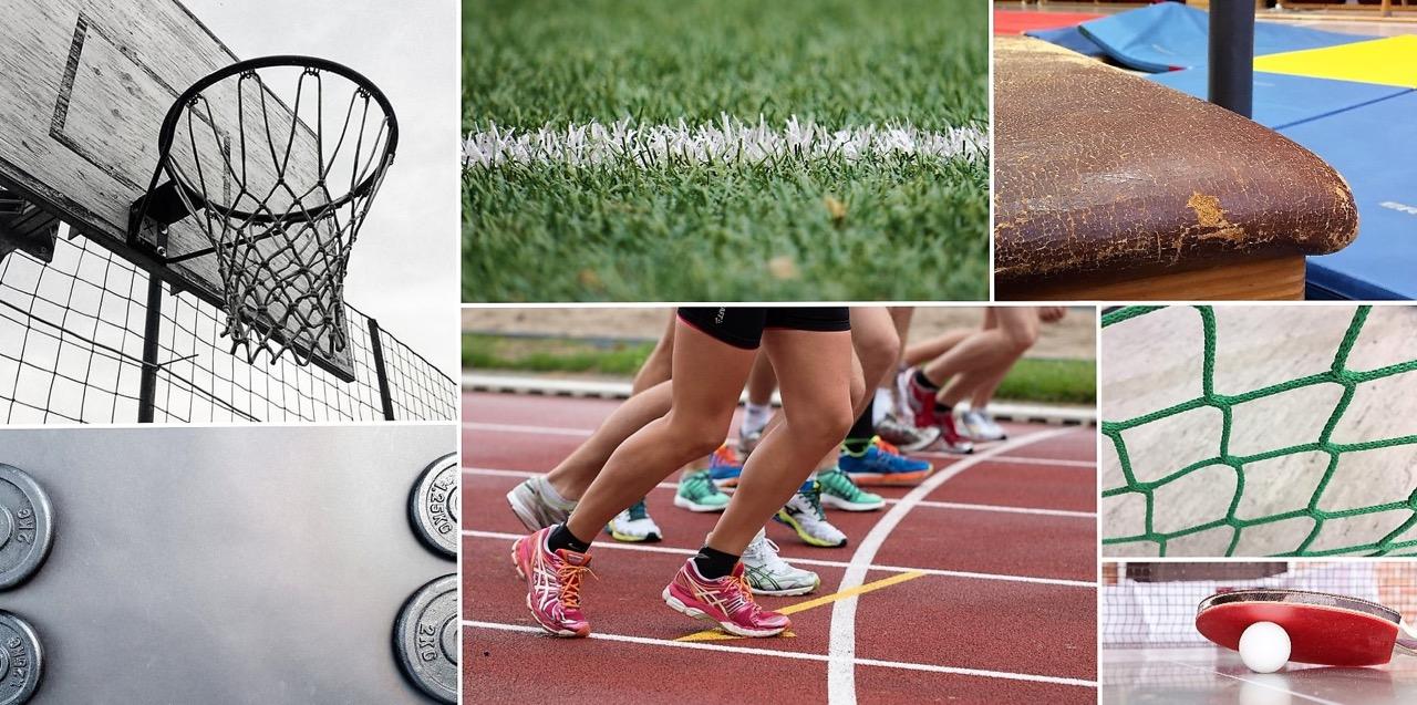 Sek II Sportkurswahlzettel 18-20